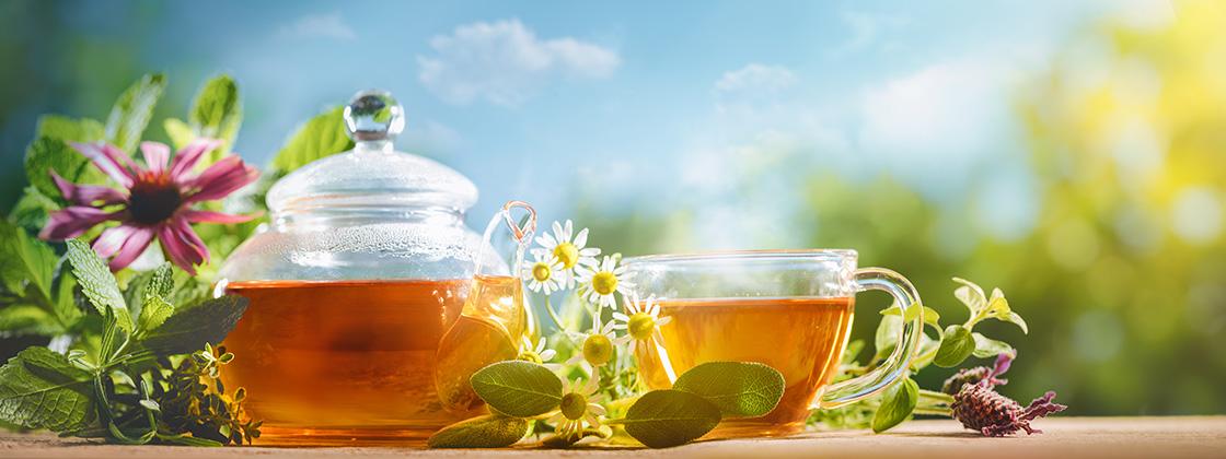 Entdecken Sie unsere Sommer Tees